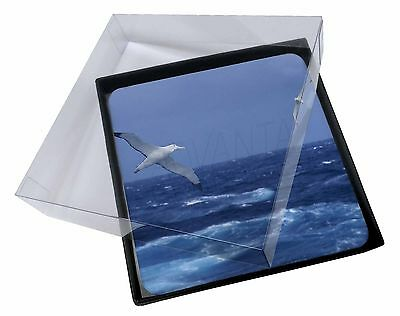 4x Sea Albatross Flying Free Picture Table Coasters Set in Gift Box, AB-106C
