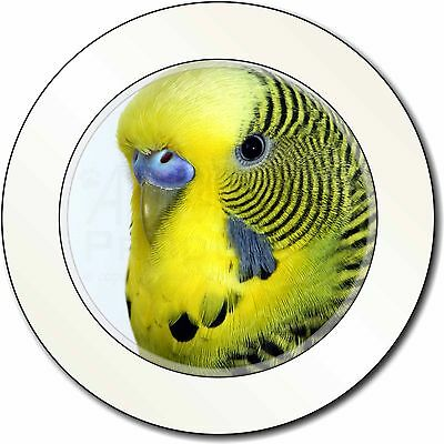 Gift Boxed New Budgerigar Tea Light Holder Green Budgie Tea Light