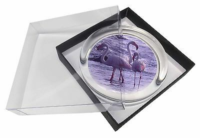 Pink Flamingo on Sea Shore Glass Paperweight in Gift Box Christmas Pres, AB-52PW