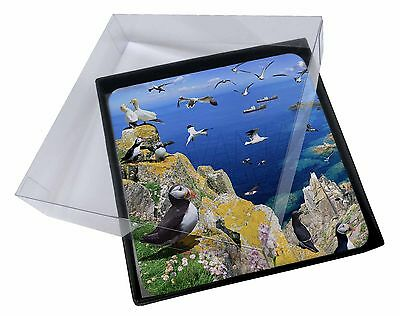 4x Puffins and Sea Bird Montage Picture Table Coasters Set in Gift Box, AB-93C