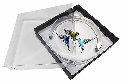 Budgerigars, Budgies in Flight Glass Paperweight in Gift Box Christmas , AB-94PW