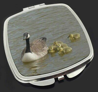 Canadian Geese and Goslings Make-Up Compact Mirror Stocking Filler Gift, AB-G1CM