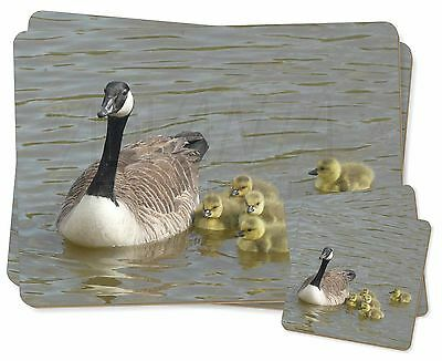 Canadian Geese and Goslings Twin 2x Placemats+2x Coasters Set in Gift B, AB-G1PC