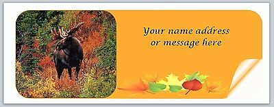 30 Personalized Return Address Labels Fall Buy 3 get 1 free (bo 925)