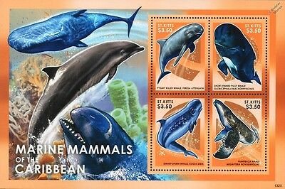 Marine Mammals of the Caribbean / WHALES 4v Stamp Sheet (2013 St Kitts)