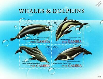 WHALES & DOLPHINS Bottlenose/Fraser's/Humpbacked/Beaked Stamp Sheet/2010 Gambia