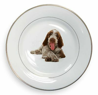 Italian Spinone Dog Gold Rim Plate in Gift Box Christmas Present, AD-SP2PL