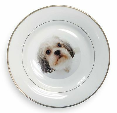 Shih-Tzu Dog Gold Rim Plate in Gift Box Christmas Present MUM-D12PL