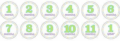 """WAY TO CELEBRATE 4"""" 12-MONTHS STICKERS Pictures+Selfies FOR BABY+PREGNANT STAGES"""
