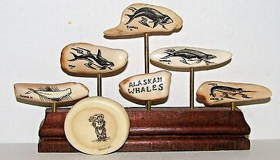9. Faux Scrimshaw Display Alaskan Whales & Signed Brooch Pin / Eskimo