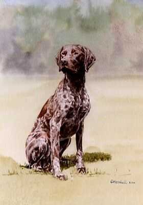 German Shorthaired Pointer Art Print by UK Artist CAH Marshall