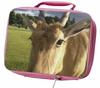 Pretty Antelope Insulated Pink School Lunch Box Bag, ANT-1LBP