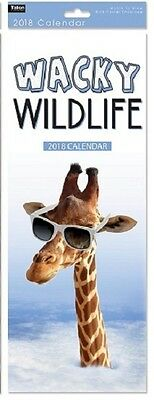 2018 Slim Month To View Spiral Bound Animal Photo Wall Calendar - Wacky Wildlife