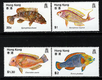 HONG KONG QE II 1981 The Complete Fishes Set SG 395 to SG 398 MNH