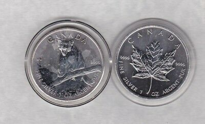 2012 Canada Silver One Ounce Cougar Coin In Near Mint Condition With A Capsule