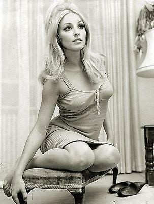 Sharon Tate Superstar  Special    8X10 Photo