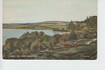Lough Fea nr Cookstown, Tyrone, Northern Ireland
