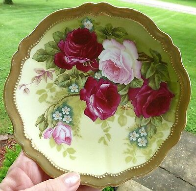 Antique Hand Painted Austria Porcelain Plate Signed