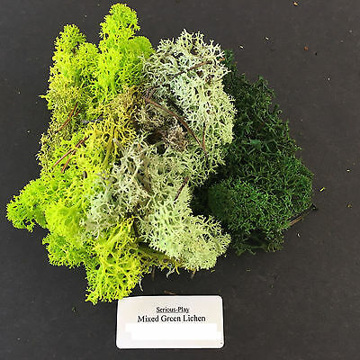 S-P Mixed Green Lichen -Scenery Foliage Wargames Railway Model Terrain Tree Moss