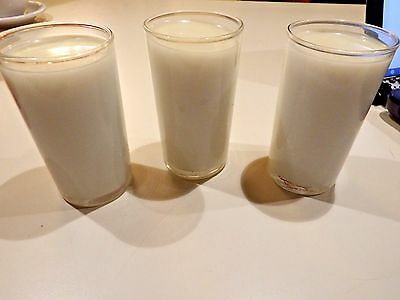 Realistic Life Size Faux Artificial Fake Food: 1 Glass of Milk