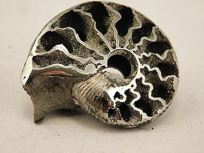 A Large Polished 100%Natural PYRITE Ammonite Fossil Mikhaylov Mine Russia 17.6gr