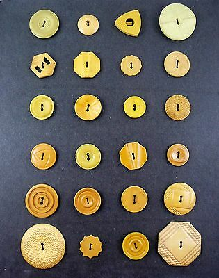 24 Vintage 1930s 40s BAKELITE Etc BUTTONS on Collector Card - Shades of Bone