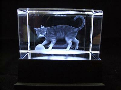 Solid Glass Crystal Laser Block and White Light Box Cat.