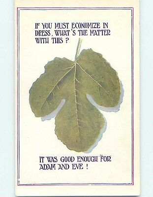 Bamforth comic ECONOMIZE - LEAF WAS GOOD ENOUGH FOR ADAM AND EVE ho3880