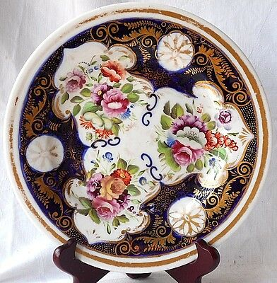 C19Th Coalport Hand Painted Floral And Gilded Plate