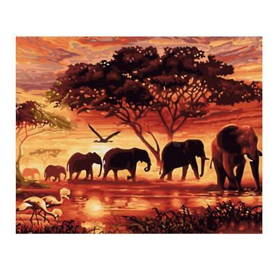 DIY Digital Oil Painting By Number Kit Canvas Artwork Paint Elephants & Dusk