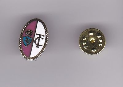 Torino ( Italy ) - lapel badge butterfly fitting