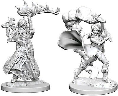 Human Female Cleric - Dungeons & Dragons Pathfinder Primed Unpainted 25Mm Minis