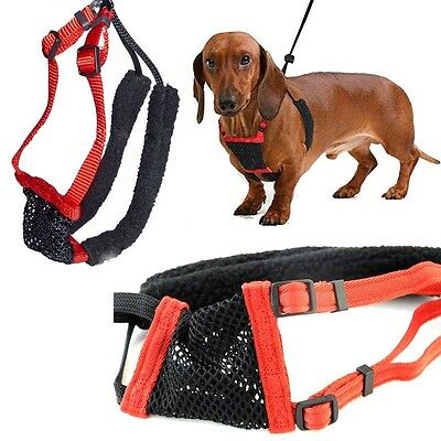 Anti-Pull Breathable Mesh Puppy Dog Harness Vest Safety No Pull Control Straps