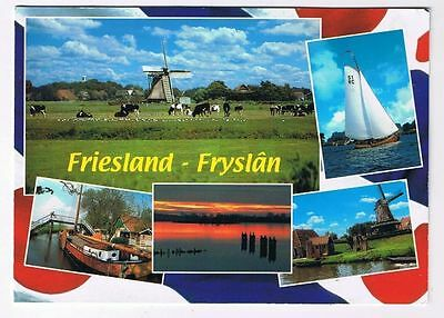 Holland Netherlands Postcard Friesland Fryslan Multi View Cows Boats Windmill