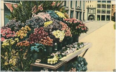 San Francisco STREET FLOWER STANDS Scenic View Vintage Linen Postcard Unposted