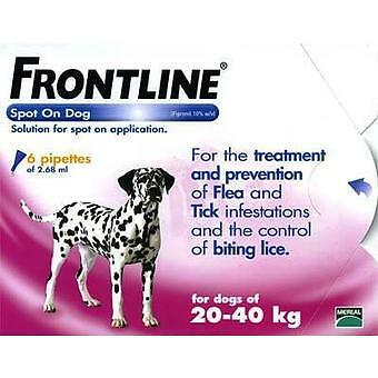 Frontline Spot On Flea Drops for Large Breed Dogs and Puppie