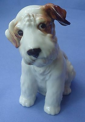 Sealyham Fox Terrier Schierholz Dog Germany 5""