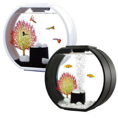 Small Nano Mini Kids Aquarium Fish Tank Coldwater LED Lighting 10L Black / White