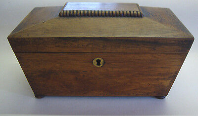 Early 19th century mahogany sarcophagus two part tea caddy