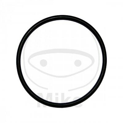 Athena Exhaust Gasket O-Ring Compatibility