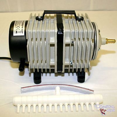 Hailea 140 Ltr Piston Air Pump Koi Fish Pond Compressor Hydroponics Aco009E