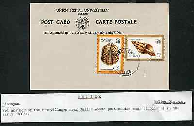 BELIZE: (13348) Shells/BISCAYNE TRD cancel/Post Card