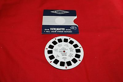 View Master Single Packet Dutch Scenes Ref 1916 Floriade And Euromast Rotterdam