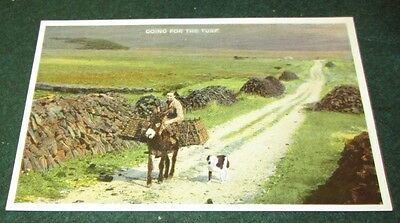 Going For The Turf. Postcard