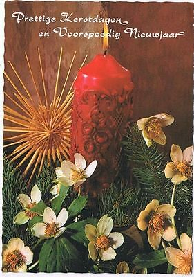 Holland Netherlands Postcard Christmas Greeting Candle Flowers