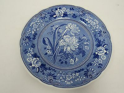 """Spode Blue Room Collection 10 1/2"""" Botanical Plate - STA P8"""