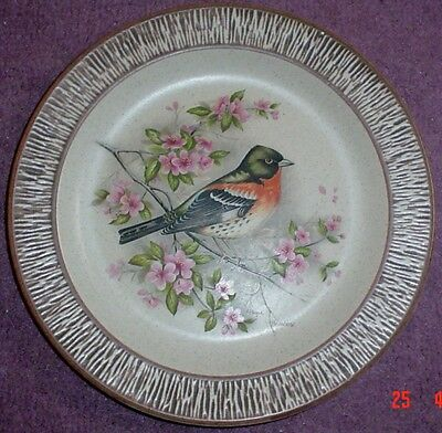 Purbeck Pottery Decorative Bird Plate