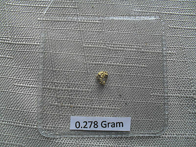 Lovely Gold Nugget 0.278 gram panned from a river at Baile - An - Or  Scotland