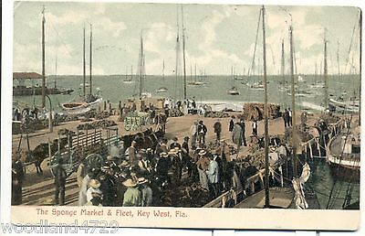 Sponge Market & Fleet KEY WEST FL 1907