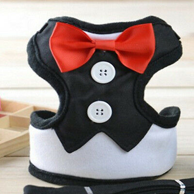 Cute Puppy Pet Dog Harness Leash Adjustable Breathable Running Safety Training S